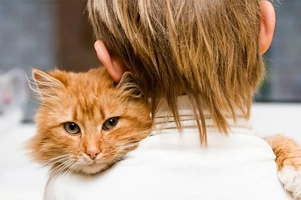 Мальчик обнимает кота